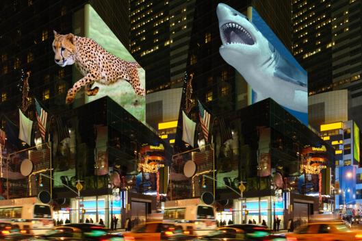 Top 10 Reasons to use a holographic display for advertising